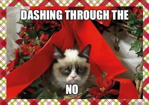 Grumpy Cat's Holiday Cheer