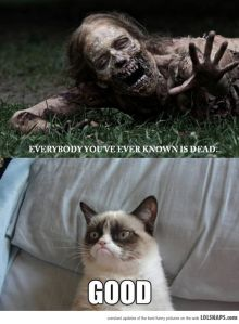 Grumpy Cat on The Walking Dead