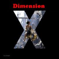 dimension_x